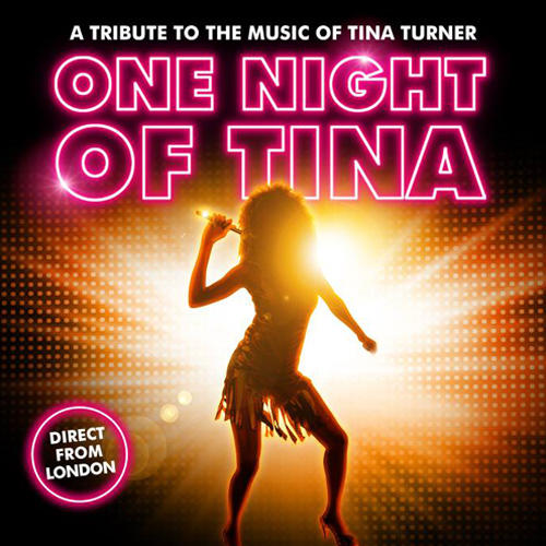 One Night of Tina Tickets
