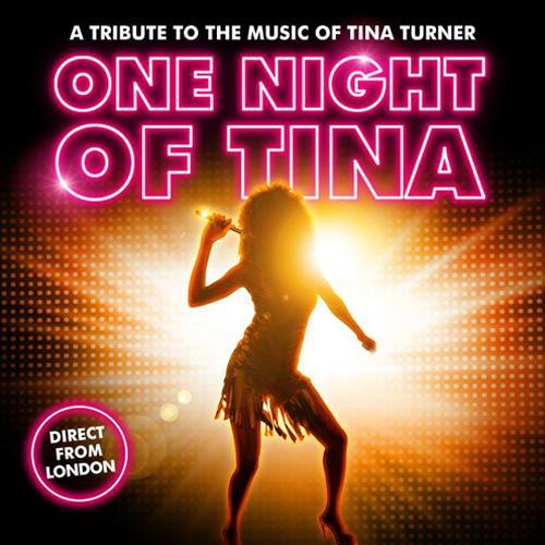 One Night of Tina Tickets